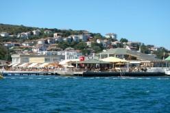 Burgazada Su Sporları Kulübü Önü Deniz Suyu Analiz Sonuçları