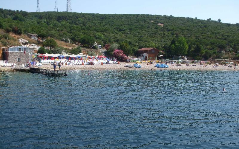 Kınalıada Ülker Restaurant Önü Deniz Analiz Sonuçları