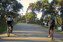 Adalarda Bisiklet Turu