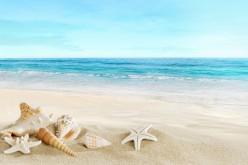 Adalarda Deniz Sezonu Ne Zaman Açılıyor!