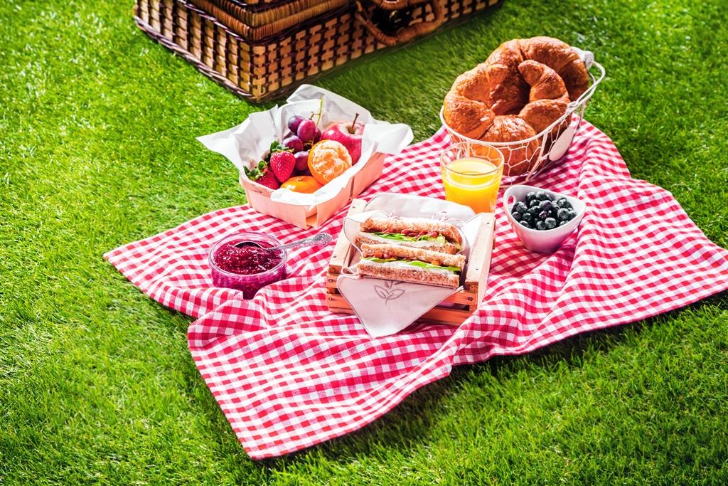 anneler günü piknik etkinliği