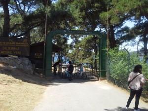 Büyükada Dilburnu piknik ve mangal alanı