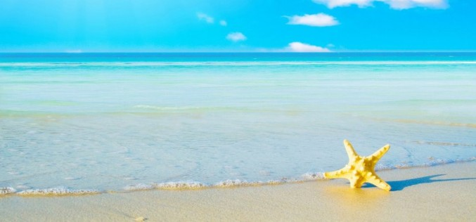 Adalar'da 2015 Deniz Suyu Analizi Başladı