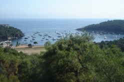 Heybeliada Çam Limanı Piknik Alanı