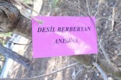 Kınalıada'da Bir Hatıra Ormanı, Desil Berberyan Anısına…