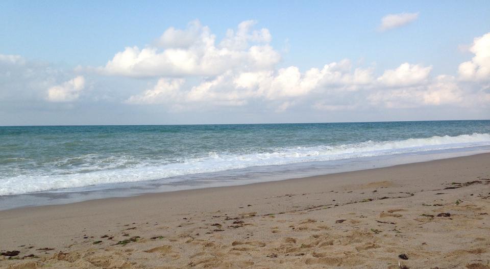 Çatalca Binkılıç Çilingoz Plajı