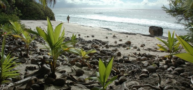 Issız Adalarda Yaşam Nasıl Olur? | Issız Adalar |  Yaşanabilir Issız Adalar Nerededir?